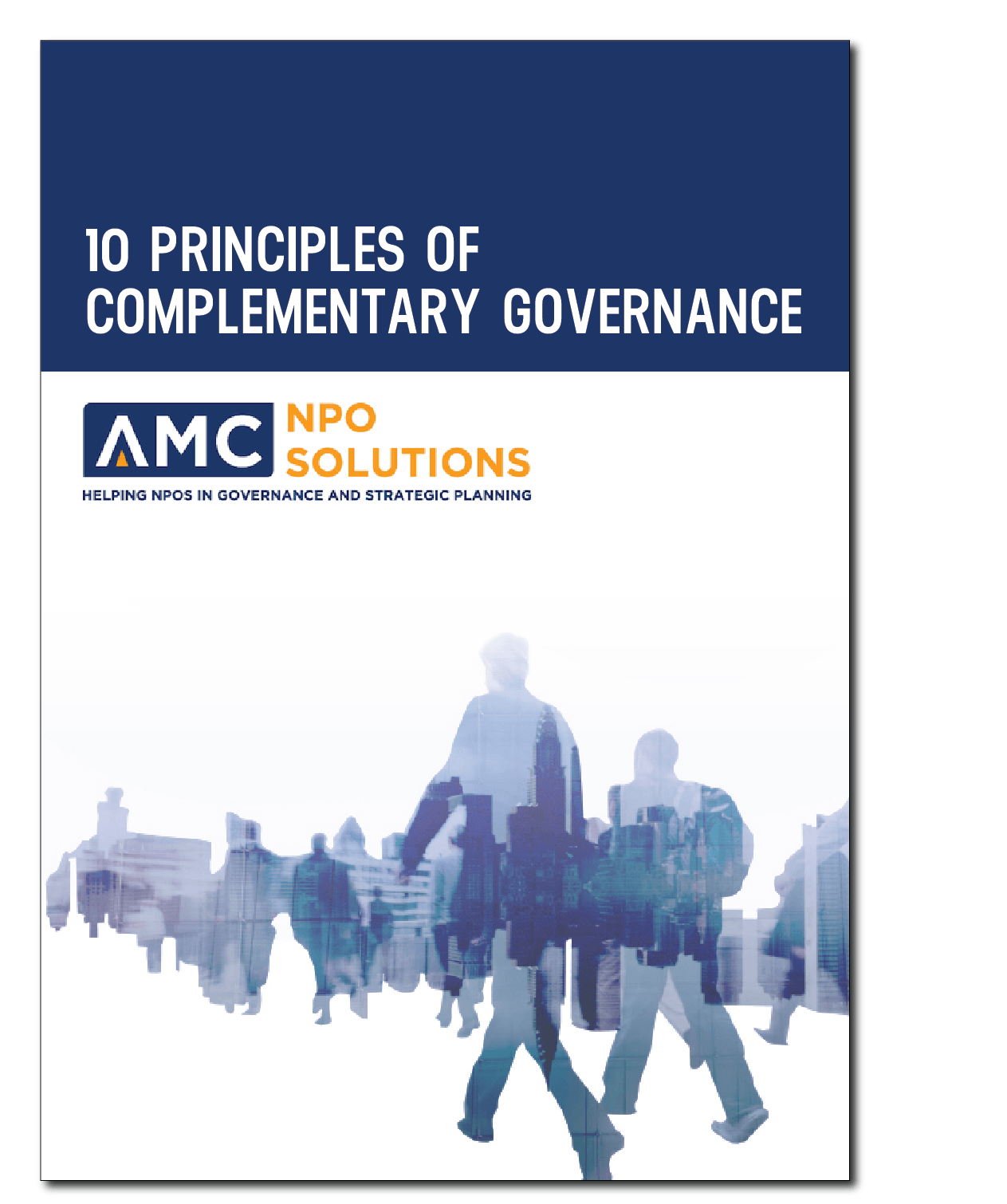 10 Principles of complementary governace